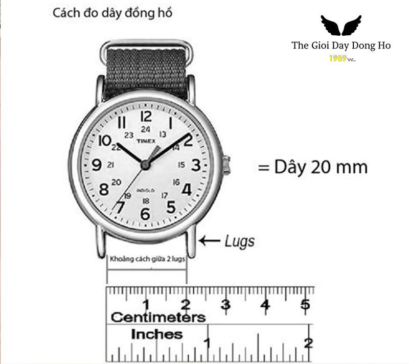 Cách đo size dây đồng hồ dw